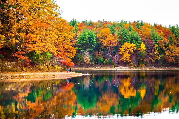 Massachusetts Landscape