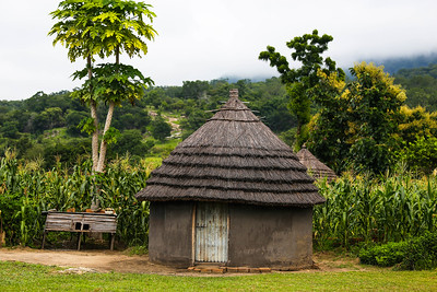Village Hut, Uganda, 2016 Photo credit: Julianne Meisner (Stergachis Fellowship)