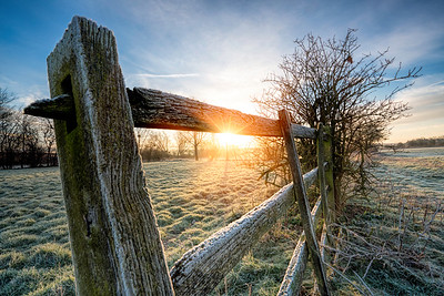 Another Frosty Start by  David Stoddart