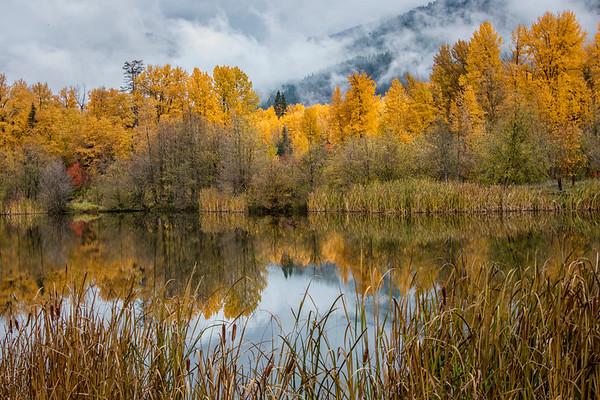 Autumn Photos Pacific NW