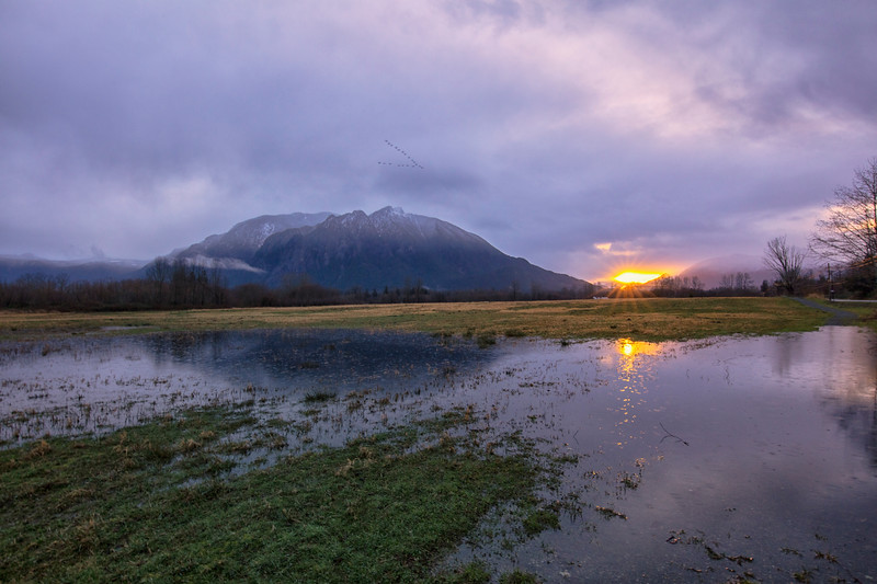 Mount Si Sunrise Reflection Meadowbrook Farm - Geese