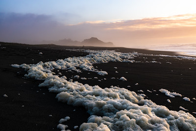 OREGON SEA FOAM