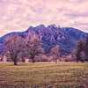 Mountain Meadows Farm Golden Hour Mt Si  3-9-18 Bright HDR