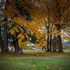 Autumn at Mountain Meadows Farm