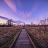 Winter Sunset Boardwalk Meadowbrook Farm Monet Impression