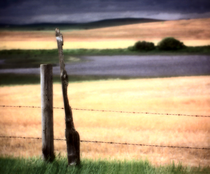 Prairie Scene Saskatchewan Canada