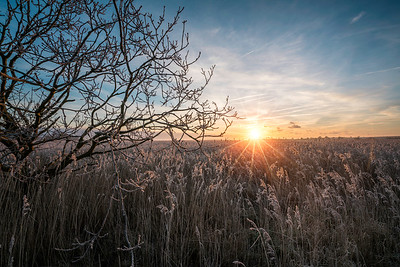 A frosty sunrise by David Stoddart