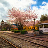 Spring at the Snoqualmie Depot and Gazebo Monet Version