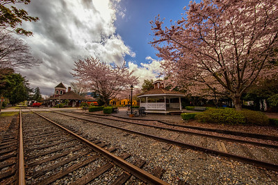 Snoqualmie in Spring Ultra Wide Angle