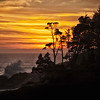 Shore Pines and Waves Sunset Depoe Bay Oregon