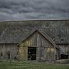 Old Barn Yellow Lichen Burlington WA - HDR