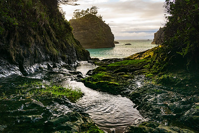 SECRET BEACH - OREGON