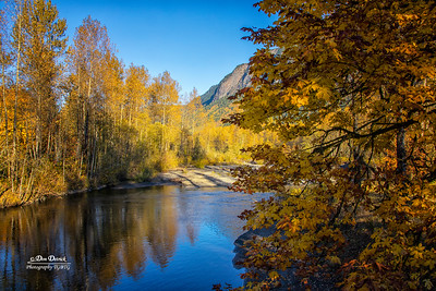 North Fork Reflection Trees Fall