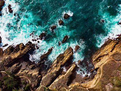 Point Lobos Shore
