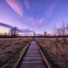 Winter Sunset Boardwalk Meadowbrook Farm