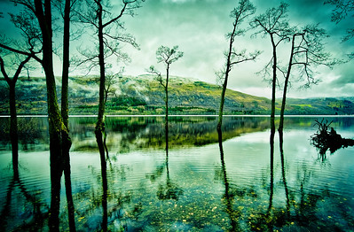 Reflections of Teal Mountain by David Stoddart