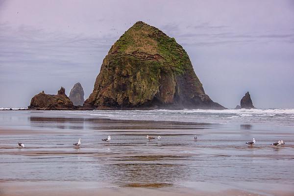 Oregon - Washington Coast Ocean Beaches
