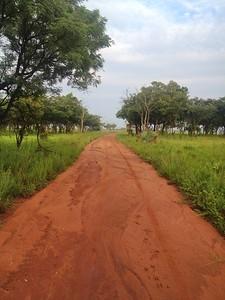 Road, Uganda, 2015 Photo credit: David Phillips (GOHealth Fellowship)