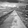Cramond Causeway
