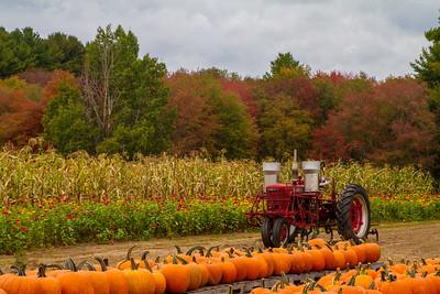 The Farm at Walden Woods Fall Scene 10-9-15 Concord MA - Copy