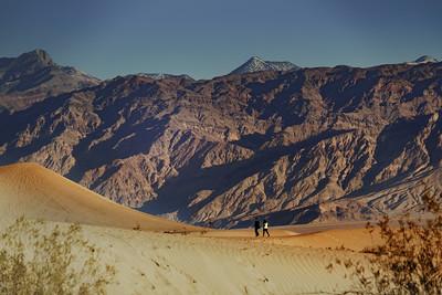 Mesquite Sand Dunes 2868