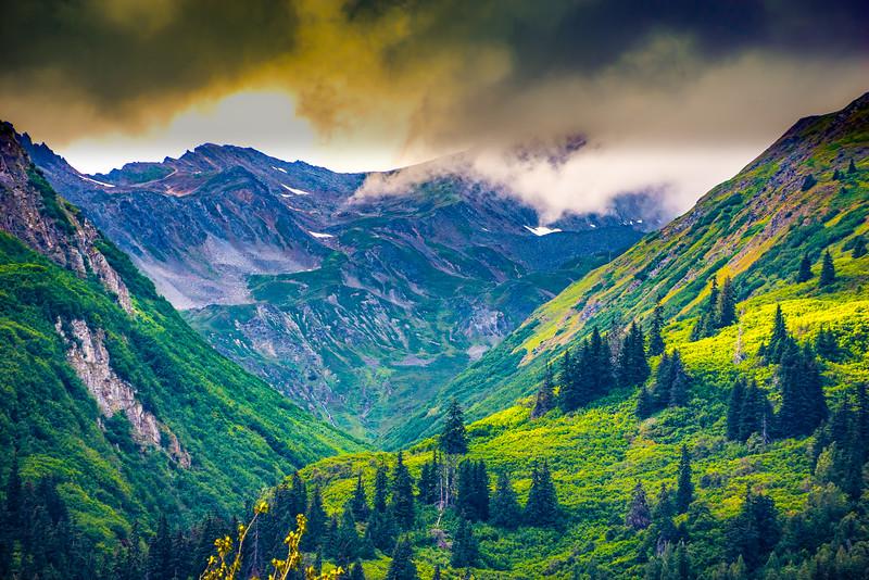 Haines Wilderness  3279