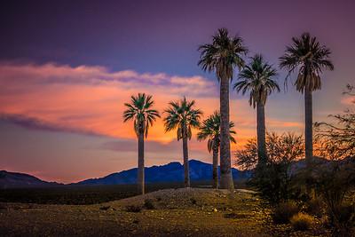 Coyote Springs