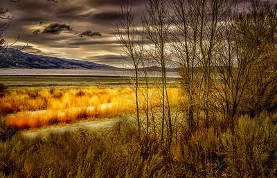 Fall at Washoe Lake