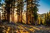 Lassen Trail at Sunset