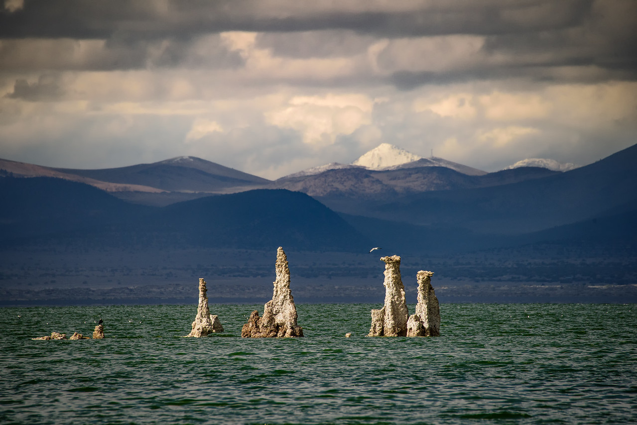 Windy Day on Mono Lake 6567