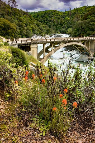 Yuba River 49er Bridge 5754