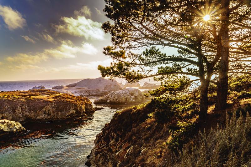 Point Lobos at Sunset