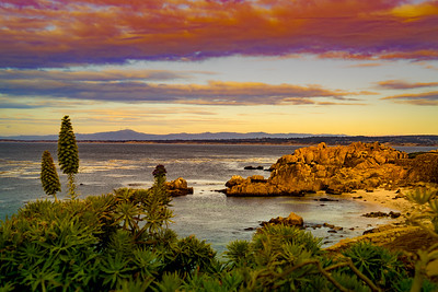 Pacific Grove at Sunset 0650