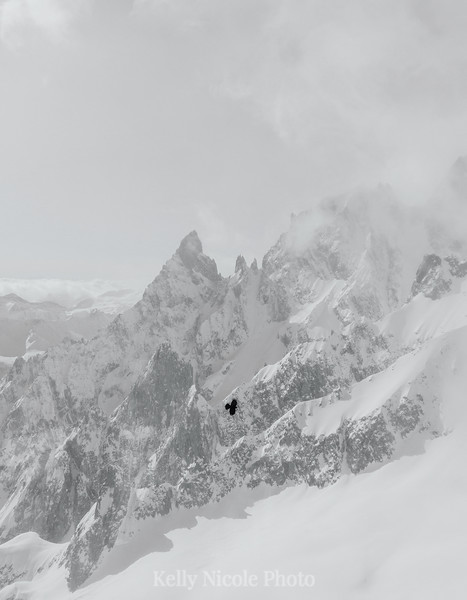 Bird flying by Mount Blanc, France