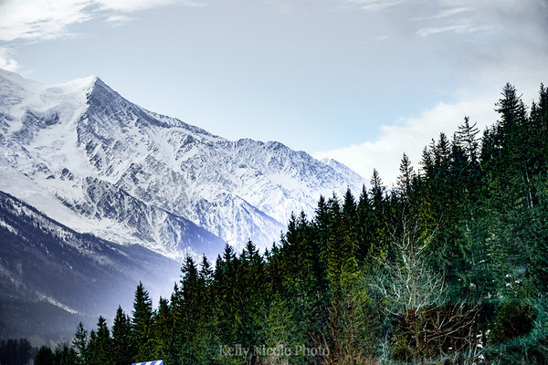 The snowy alps + Green pines