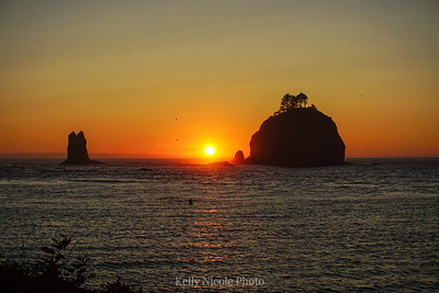 Sunset on the Washington Coast