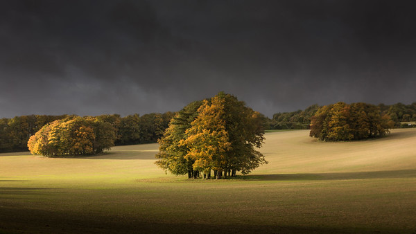 Autumn on the Downs