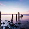 The Old Groynes Seasalter