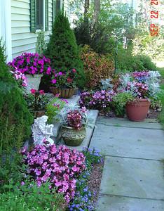 garden-1077 front steps
