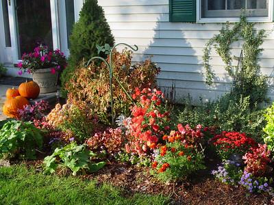 garden-1188 fall yard