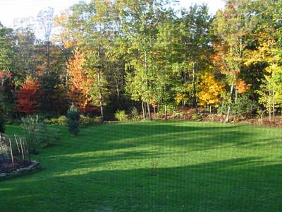 garden-1198 backyard in fall