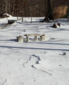 Winter 2010-2011-jlb-00-12-28-10-5538