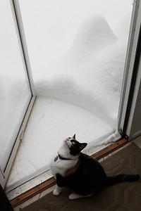 Winter 2010-2011-jlb-01-12-11-5864