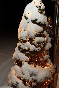 Winter 2010-2011-jlb-01-07-11-5542