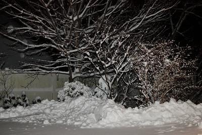 Winter 2010-2011-jlb-01-07-11-5550
