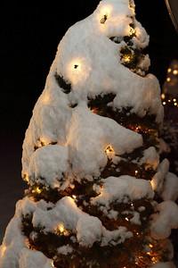 Winter 2010-2011-jlb-01-07-11-5543