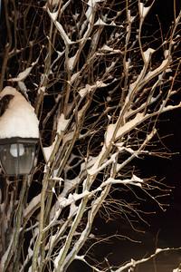 Winter 2010-2011-jlb-01-07-11-5552