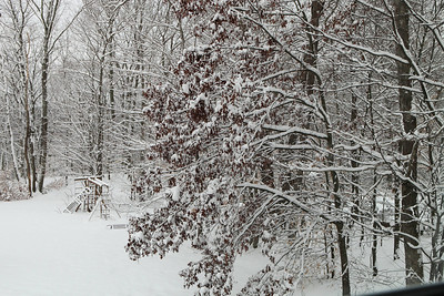 Winter 2010-2011-jlb-01-07-11-5560