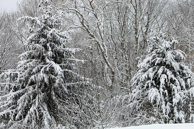 Winter 2010-2011-jlb-01-07-11-5563