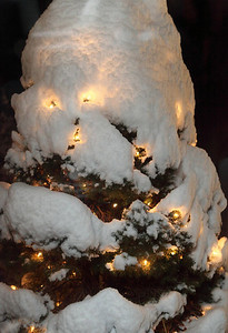 Winter 2010-2011-jlb-01-07-11-5544